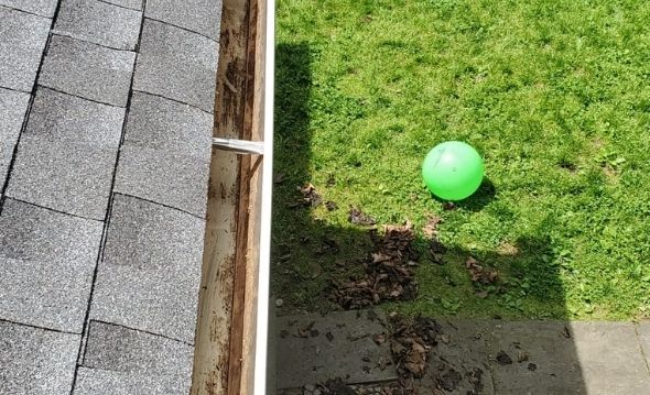 Project: Gutter Cleaning and New Filter Installation in New Rochelle