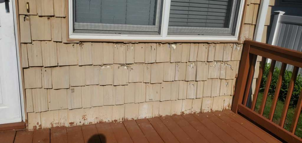 Project: New Gutters Siding Flat Roof Service Project Shot 12