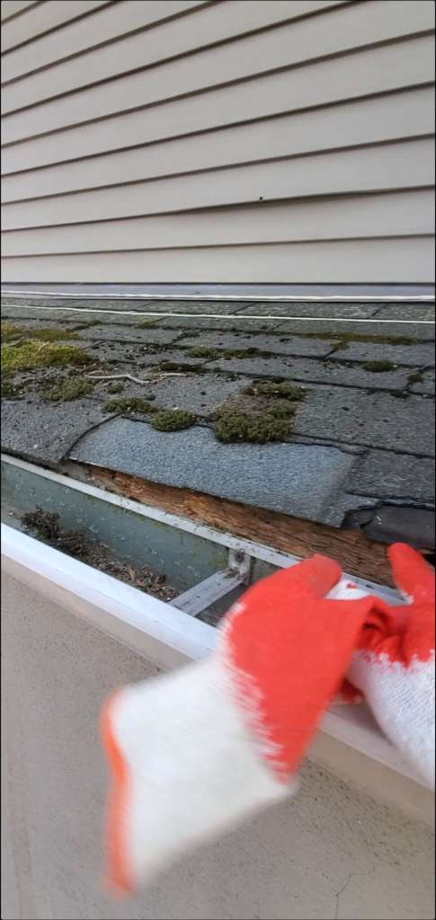 New Single Roof Replacement in Brunsville Project Shot 5
